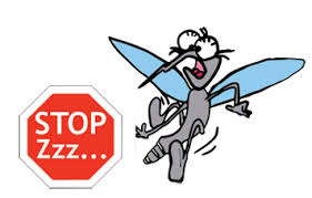 no zanzara 2